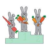 Campeones de los conejos Imagen de archivo libre de regalías