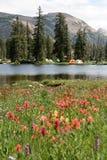 Camper à côté d'un lac photo stock