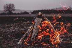 Camper avec des amis Photo stock