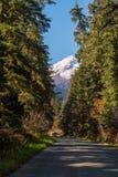 Camper am Bäcker Lake Road, umgeben von den Bäumen und von Schnee-mit einer Kappe bedecktem Bäcker Mountain im Hintergrund an den lizenzfreies stockbild