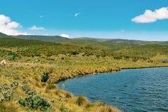 Camper chez le mont Kenya images stock
