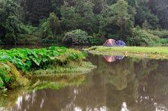 Camper dans des tentes Photo stock