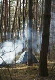 Camper dans la forêt photos stock