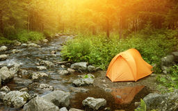 Camper dans la forêt Photographie stock