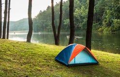 Camper dans la forêt Photographie stock libre de droits