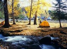 Camper dans la forêt d'automne images libres de droits