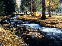 Camper dans la forêt d'automne image stock