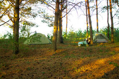 Camper dans les bois image stock