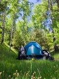 Camper dans un bois Photos libres de droits