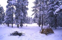Camper de l'hiver Photographie stock