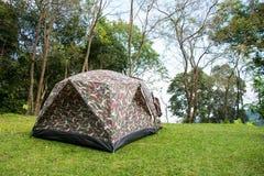Camper sautent la tente dedans dans la forêt Images libres de droits