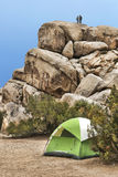 Campers Rock Climbing in Joshua Tree National Park Royalty Free Stock Image