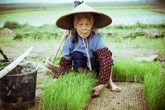 Campesino chino Imágenes de archivo libres de regalías