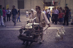 Campesino medieval Fotos de archivo libres de regalías