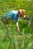Campesino que cava en el jardín Fotos de archivo