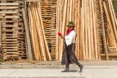 Campesino quechua que trabaja en camino Fotos de archivo libres de regalías