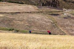 Campesinos en el campo que toma cuidado fotografía de archivo