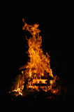 Campfire 1. Burning stack of wood Royalty Free Stock Photos