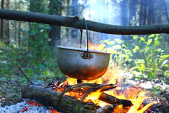 Campfire. In the wood.Kijiv.Ukraine Royalty Free Stock Images