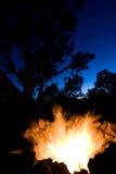 campfire Arkivfoton