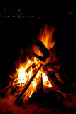 Campfire. Flames on black night background Royalty Free Stock Image