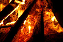 Campfire. Close up of campfire flames Royalty Free Stock Images