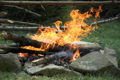 Campfire. Fire in the morning. Green grass and stones royalty free stock image