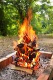 campfire Royaltyfri Foto