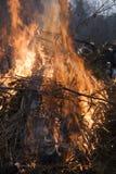 Campfire Royaltyfria Foton