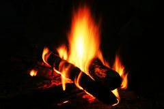 Campfire royalty free stock image