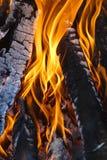 Campfire. Close-up of campfire flame Royalty Free Stock Photos