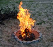 Campfire. The campfire in the evening, branches in the background Royalty Free Stock Image