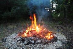 campfire Arkivbild