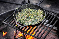 Campfire Breakfast Stock Image