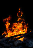 Campfire built outdoors Royalty Free Stock Photo