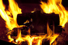 Campfire Burning. Roaring fire in a fire pit Royalty Free Stock Image