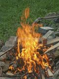 Burning Campfire on the meadow. Campfire with burning logs and wood waste - light and heat source alike Royalty Free Stock Images