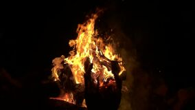 Campfire In slow motion stock video footage
