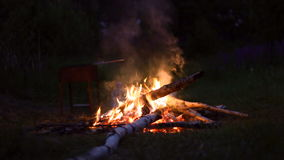 Campfire burning at summer night forest - traveling concept. Ural, Russia stock video