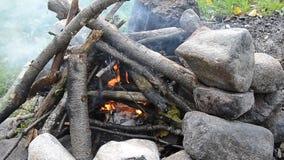Campfire. stock video