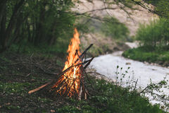 Campfire. Camp fire start near to the river Stock Images