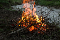 Campfire. Camp fire start near to the river Stock Image