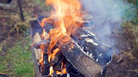 Campfire camp fire summer burning fire campfire stock video