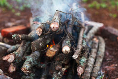 Campfire close up Royalty Free Stock Photography
