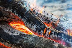 Campfire Stock Image
