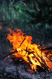 Campfire Stock Photography