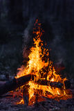 Campfire Royalty Free Stock Images