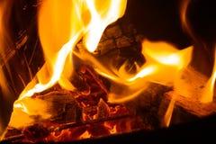 Campfire Closeup Royalty Free Stock Image