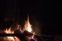 Campfire Stock Image