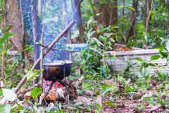 Campfire Cooking in the Amazon Stock Images